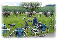 Velo-Touring, cycling tours, europe tour, europe trip, cycling holidays, individual bike tour, bike holidays
